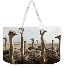 Ostrich Heads Weekender Tote Bag by Johan Swanepoel
