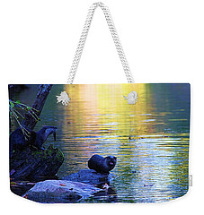 Otter Family Weekender Tote Bag by Dan Sproul