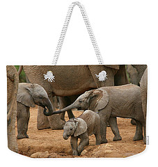 Pachyderm Pals Weekender Tote Bag by Bruce J Robinson
