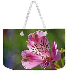 Pink Alstroemeria Flower Weekender Tote Bag by Rona Black
