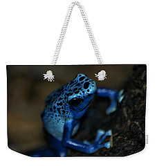 Poisonous Blue Frog 02 Weekender Tote Bag by Thomas Woolworth