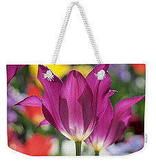 Radiant Purple Tulips Weekender Tote Bag by Rona Black