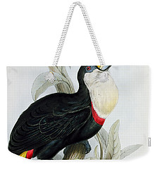 Red-billed Toucan Weekender Tote Bag by Edward Lear