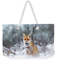 Red Fox Blue World Weekender Tote Bag by Roeselien Raimond