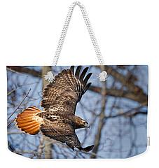 Redtail Hawk Weekender Tote Bag by Bill Wakeley