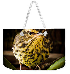 Round Warbler Weekender Tote Bag by Karen Wiles