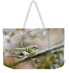 Ruby-crowned Kinglet Weekender Tote Bag by Christina Rollo