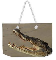 Salt Water Crocodile 1 Weekender Tote Bag by Bob Christopher