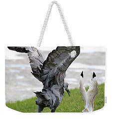Sandhill Chasing Ibis Weekender Tote Bag by Carol Groenen
