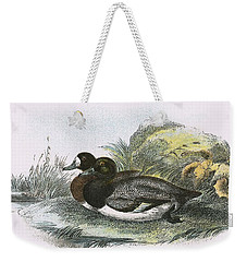 Scaup Duck Weekender Tote Bag by English School