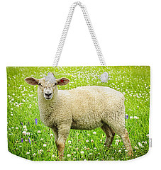 Sheep In Summer Meadow Weekender Tote Bag by Elena Elisseeva