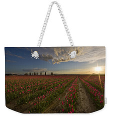 Skagit Tulip Fields Sunset Weekender Tote Bag by Mike Reid