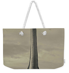 Skyline Drive Dinosaur Statue At Dawn Weekender Tote Bag by Panoramic Images