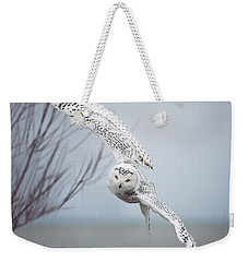 Snowy Owl In Flight Weekender Tote Bag by Carrie Ann Grippo-Pike