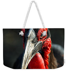 Southern Ground Hornbill Portrait Front View Weekender Tote Bag by Johan Swanepoel