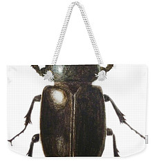 Stag Beetle Weekender Tote Bag by Ele Grafton