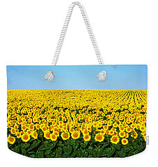 Sunflower Field, North Dakota, Usa Weekender Tote Bag by Panoramic Images