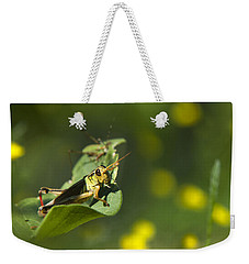 Sunny Green Grasshopper Weekender Tote Bag by Christina Rollo
