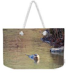 Sunrise Otter Weekender Tote Bag by Mike Dawson