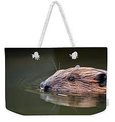 The Beaver Weekender Tote Bag by Bill Wakeley