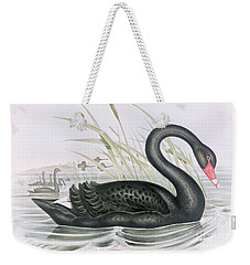 The Black Swan Weekender Tote Bag by John Gould