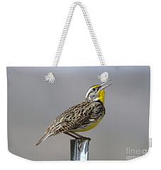 The Meadowlark Sings  Weekender Tote Bag by Jeff Swan