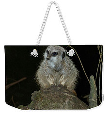 The Meerkat Weekender Tote Bag by Chalet Roome-Rigdon