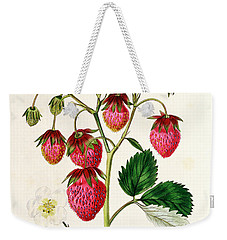The Roseberry Strawberry Weekender Tote Bag by Edwin Dalton Smith