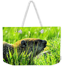 The Sound Of Silence Weekender Tote Bag by Robyn King