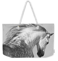 The Spanish Stallion Tosses His Head Weekender Tote Bag by Carol Walker