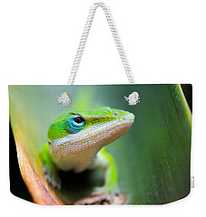 The Watching Eye Weekender Tote Bag by Shelby  Young