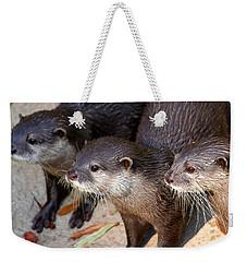 Three Otters Weekender Tote Bag by Daniel Eskridge