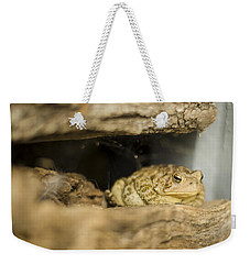 Toad In The Hole Weekender Tote Bag by Heather Applegate