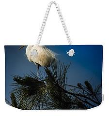 On Top Of The World Weekender Tote Bag by Karen Wiles