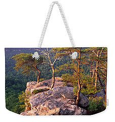 Trees On A Mountain, Buzzards Roost Weekender Tote Bag by Panoramic Images