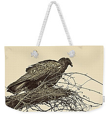 Turkey Vulture V2 Weekender Tote Bag by Douglas Barnard