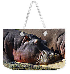 Two Hippos Sleeping On Riverbank Weekender Tote Bag by Johan Swanepoel