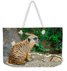 Watchful Meerkat Weekender Tote Bag by Jon Woodhams
