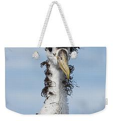 Waved Albatross Molting Juvenile Weekender Tote Bag by Pete Oxford