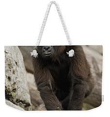 Western Lowland Gorilla Baby Weekender Tote Bag by San Diego Zoo