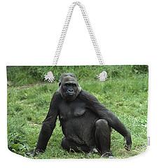 Western Lowland Gorilla Female Weekender Tote Bag by Gerry Ellis