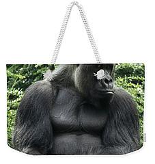 Western Lowland Gorilla Male Weekender Tote Bag by Konrad Wothe