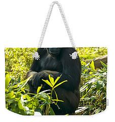 Western Lowland Gorilla Sitting On A Tree Stump Weekender Tote Bag by Chris Flees