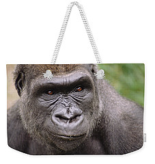 Western Lowland Gorilla Young Male Weekender Tote Bag by Gerry Ellis