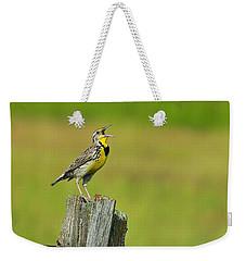 Western Meadowlark Weekender Tote Bag by Tony Beck