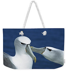 White-capped Albatrosses Courting Weekender Tote Bag by Tui De Roy