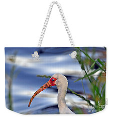 Intriguing Ibis Weekender Tote Bag by Al Powell Photography USA