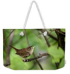 Wild Birds - House Wren Weekender Tote Bag by Christina Rollo
