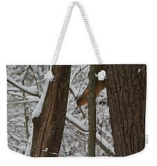 Winter Squirrel Weekender Tote Bag by Dan Sproul