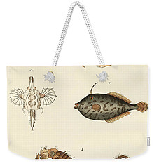 Wonderful Fish Weekender Tote Bag by German School